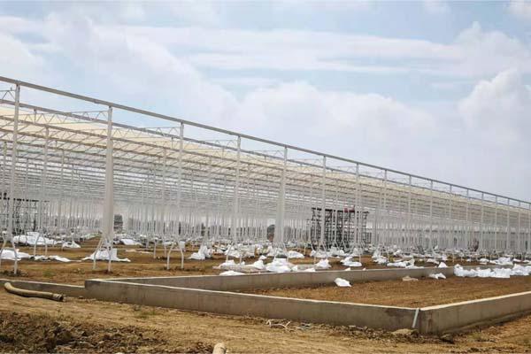 wuhan smart agricultural park