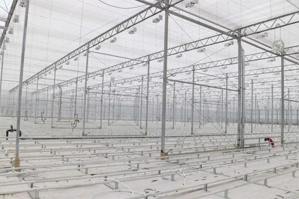 Bijie Qixingguan Cucumber and Tomato Greenhouse Project
