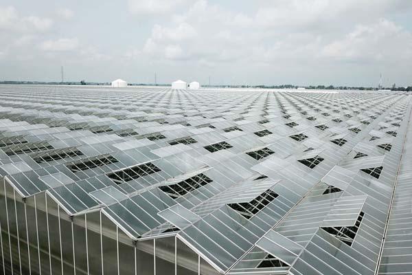 Pomas Greenhouse Project-Canada